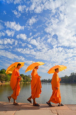 Three Monks with parasols by the moat surrounding Angkor Wat Temple complex, Siem Reap, Cambodia, 2010  -  Gavin Hellier/ npl