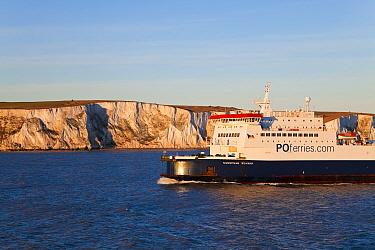 White cliffs of Dover viewed from cross channel ferry, Kent, UK 2009  -  Gavin Hellier/ npl