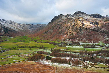 Langdale Pikes from Side Pike, Lake District National Park, Cumbria, UK November 2008  -  Gavin Hellier/ npl