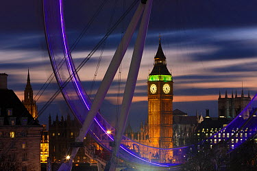 Millennium Ferris Wheel, London Eye and Big Ben, illuminated at night, London, UK 2008  -  Gavin Hellier/ npl