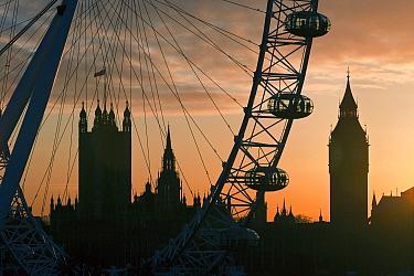 Millennium Ferris Wheel, London Eye and Big Ben, silhouetted at sunset, London, UK 2008  -  Gavin Hellier/ npl