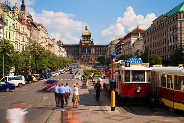 Wenceslas Square with traditional trams and tourists, Prague, Czech Republic 2011  -  Gavin Hellier/ npl