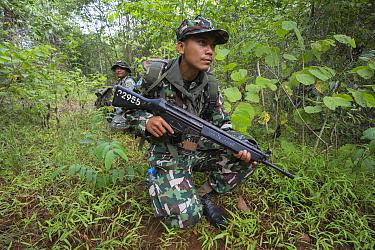 Anti-poaching patrol, Thap Lan national park, Dong Phayayen-Khao Yai Forest Complex, eastern Thailand, August, 2014  -  Ann & Steve Toon/ npl