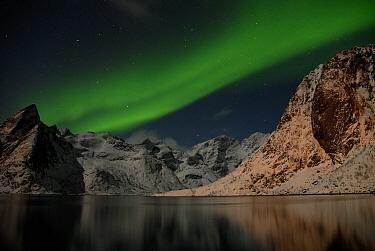 The Northern lights (Aurora borealis) viewed from Moskenes, Lofoten, Nordland, Norway, March 2006.