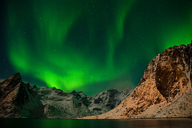 The Northern lights (Aurora borealis) viewed from Moskenes, Lofoten, Nordland, Norway, March 2006.