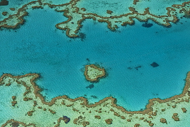 Aerial view of Hardy Reef, Great Barrier Reef, August 2011