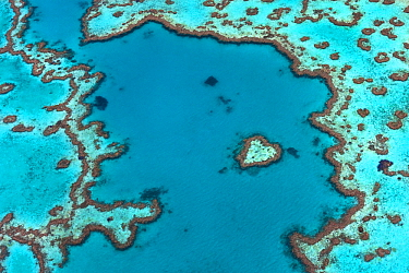 Aerial view of Hardy Reef, Great Barrier Reef, Queensland, Australia, December 2010.