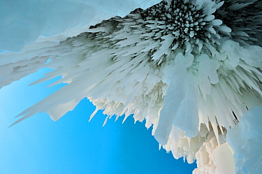 Icicles / ice stalactites hanging from cave ceiling, Lake Baikal, Siberia, Russia, March.
