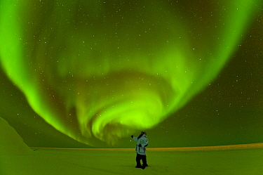 Photographer in front of Northern lights / Aurora borealis glowing brightly over the frozen eastern Beaufort Sea, Arctic National Wildlife Refuge, Alaska