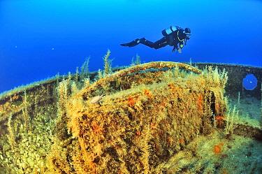 Diver diving the wreck of the tug boat Rozi scuttled in 1992 off Cirkewwa, Malta, Mediterranean Sea. June 2014.