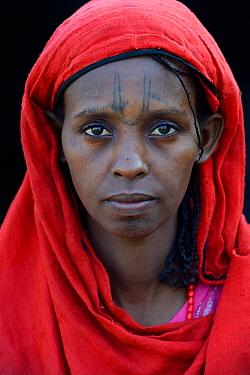 Head portrait of Afar tribe woman with facial tattoos / skin scarifications and wearing a head scarf, Malab-Dei village, Danakil depression, Afar region, Ethiopia, March 2015.