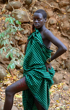 Young woman from the Bodi tribe displaying elaborate skin scarifications on her leg, her name in Amharic language, Omo Valley, Ethiopia, March 2015.
