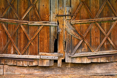 Wooden doorway in Musteika Village, on the border of the Cepkeliai reserve and the Dzukija National Park, Lithuania, May 2015.