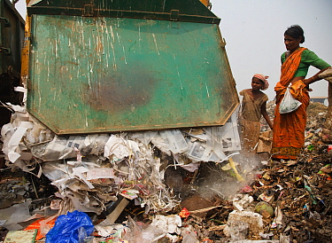 Rag-picker woman watching as rubbish truck empties its load into landfill stie, Guwahti, Assam. India, March 2009.