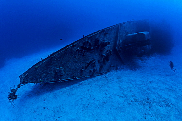 Diver explores the bow section of the 330ft long Russian frigate 356, the 'MV Keith Tibbetts', where rope sponges are growing. The ship was build in 1984 and sunk in 1996. Buccaneer Reef, Caym...
