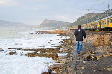 Shark spotter walking along the shore at Kalk Bay beach, near Cape Town, Western Cape, South Africa. July 2013.