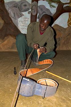 Save the Elephants employee preparing collar for elephant collaring, Samburu National Reserve, Kenya.
