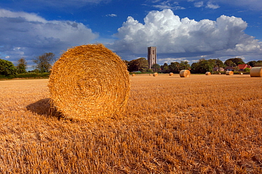 Straw bales and field of stubble, with St James Church, Southrepps, Norfolk, UK August 2014.