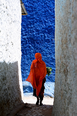 Muslim woman walking down colourful narrow streets, Harar, an important holy city in the Islamic faith, UNESCO World Heritage Site. Ethiopia, November 2014