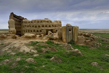 Ruined clay dovecotes, Otero de Sariegos, Villafafila, Castilla Leone, Spain, May