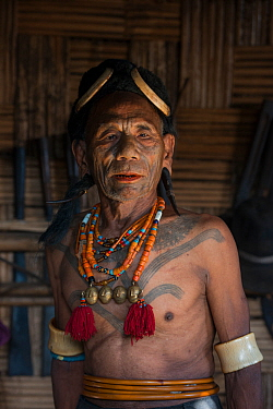 Konyak Naga tattooed chief head hunter with traditional ornamentation of Elephant ivory arm bands and Hornbill headdress. Only someone who has killed and taken a human head can be tattooed in this man...