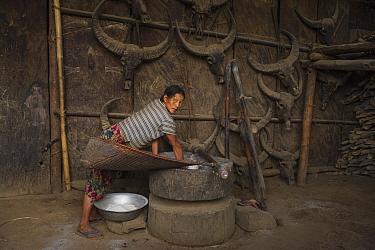 Konyak Naga winnowing rice in house, Mon district. Nagaland,  North East India, October 2014.