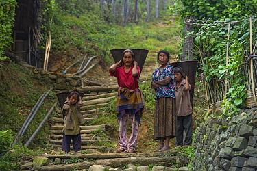Konyak Naga woman and children carrying rice baskets. Mon district. Nagaland,  North East India, October 2014.