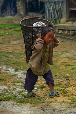 Konyak Naga  girl carrying rice basket on her back, Mon district, Nagaland, North East India, October 2014.
