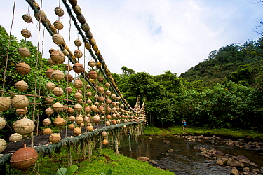 Genius River Bridge, made with marine debris by artist Tico 'Pancho', Wafer Bay ranger station, Chatham Bay, Cocos Island National Park, Costa Rica, East Pacific Ocean. September 2012.