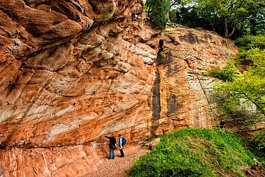 People looking at triassic New Red Sandstone cliffs of the Wilmslow Group, circa 250 million years old, Hawkstone Ridge, Hawkstone Follies, Shropshire, England, UK, May 2015.