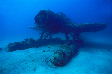 Wreck of Aichi E13A, Japanese World War Two float plane, sunk by American fighters, Solomon Islands.