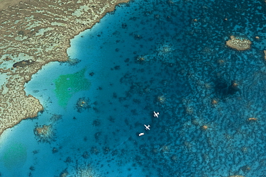 Aerial view of Hardy Reef with float planes, Great Barrier Reef, Australia, August 2011