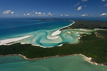 Aerial view of Whitehaven Beach - a seven kilometre stretch of pure white sand, Coral Sea, Pacific Ocean, August 2011