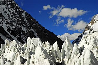 View of the Godwin-Austen Glacier, Central Karakoram National Park, Pakistan, June 2007.