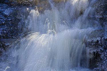 Icy waterfall, Getzbach, Belgian Ardennes, February 2008