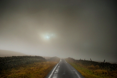 A foggy scene on the road to the Tan Hill Inn, Richmond, Yorkshire, June 2012