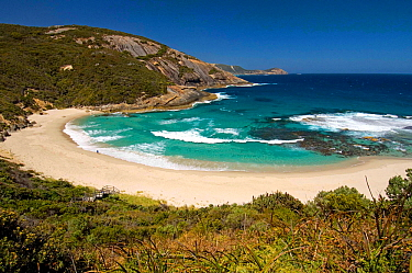 A beach at Isthmus Bay provides some good surf waves, Isthmus Bay, Torndirrup National Park, Albany, Western Australia, December
