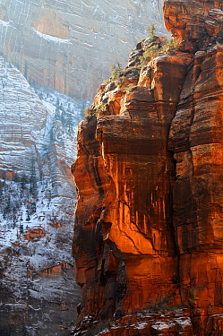 Red Cliffs in Zion Canyon during winter, Zion National Park, Utah, USA December 2012