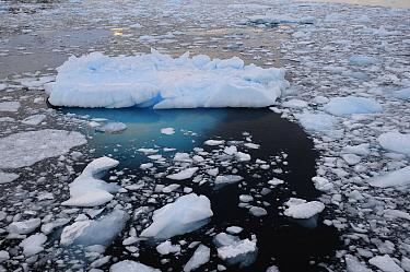 Sea ice and small iceberg, Antarctic Peninsula, Antarctica.