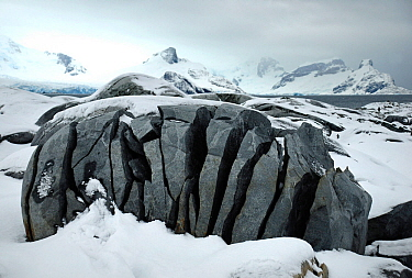 Fissured rock, caused by ice action (a freeze and thaw process) Petermann Island. Antarctica