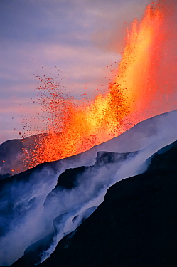 Fissure eruption of Chico Volcano into 9km diameter caldera. Sierra Negra volcano, Isabela Island, Galapagos, Ecuador. October 2005.