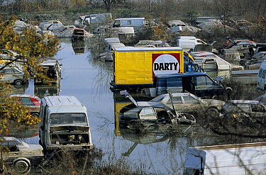 Flooded cars in scrapyard in Arles city flooded by the Rhone in December 2003. Camargue, France.