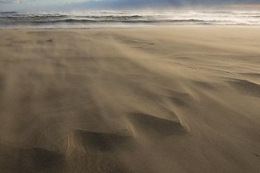 Wind blowing sand across beach, causing delta patterns, Piemanson, Camargue, France, October.