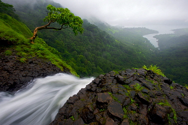 View from the top of the Ozarde waterfalls near Koyna Lake during the monsoon. Western Ghats, India, August 2010.