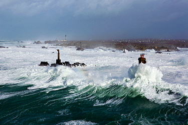 Rough seas during Storm 'Ruth', Ile d'Ouessant, Armorique Regional Park. Iles du Ponant, Finistere, Brittany, France, Iroise Sea. 8th February 2014.  France, Bretagne, Finistere, Mer d&#...