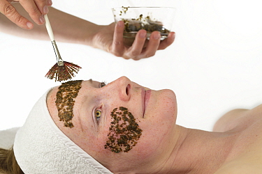 Woman having Kelp (Laminaria sp) applied to her face as part of beauty treatment. Kelp is used by comestic company Oceanwell to create various skin care products. July 2015. Model released