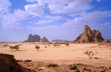 Rocky landscape of northern Niger, 2005.