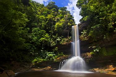 Takob-Akob Falls plunging 38 metres through the rainforest. Southern plateau edge, Maliau Basin, Sabah, Borneo, May 2011.