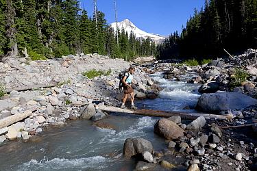 Hiker crossing  Newton Creek, Elk Meadows Trail, Mount Hood Wilderness.  Oregon, USA, July 2014.  Model released.
