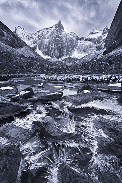 Black and white photograph of Ice crystals up to 12 inches long along a small creek in a remote valley, Brooks Range, Gates of the Arctic National Park, Alaska, August 2014.